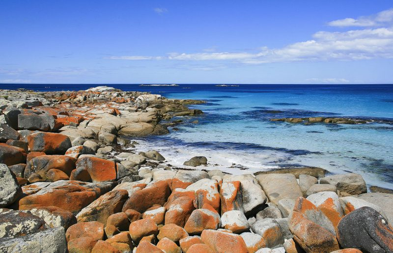 Bay of Fires 15 - Roadtrip po Tasmanii - atrakcje, noclegi, informacje praktyczne [PORADNIK]