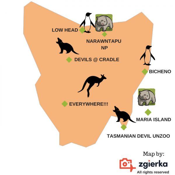 Grafika stworzona przez ł2 - Roadtrip po Tasmanii - atrakcje, noclegi, informacje praktyczne [PORADNIK]
